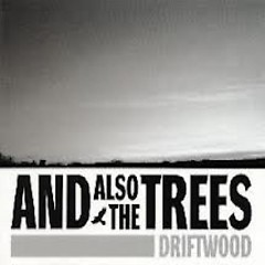 Driftwood - And Also The Trees