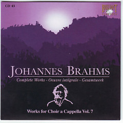 Johannes Brahms Edition: Complete Works (CD43)
