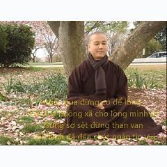 Ca Khúc  Vườn Trúc-Thầy Pháp Hòa sáng tác lời. Kính Gữi tặng Qúy Vị -