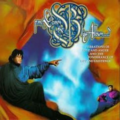 The Bliss Album...(Vibrations Of Love And Anger And The Ponderance Of Life And Existence) - P.M. Dawn