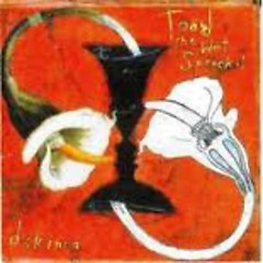 Dulcinea - Toad the Wet Sprocket