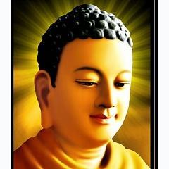 Album Thuyết pháp Phật pháp nhiệm màu (Disc 2) Nhận diện cuộc đời -
