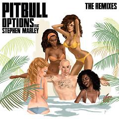 Pitbull (The Remixes) - Pitbull