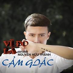 Vì Đó Là Cảm Giác (Single) - Nguyễn Hữu Thành