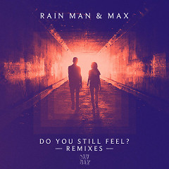 Do You Still Feel? (Remixes) - Rain Man, Max