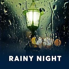 Rainy Night - Various Artists