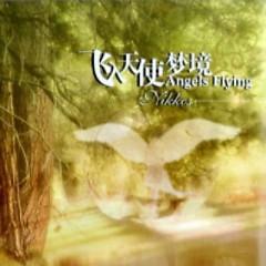 Angels Flying