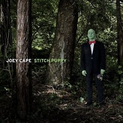 Stitch Puppy - Joey Cape