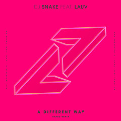 A Different Way (Kayzo Remix) - DJ Snake, Lauv