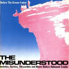 Before The Dream Faded - The Misunderstood
