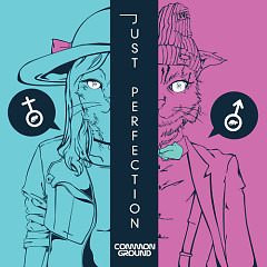 Just Perfection - Common Ground