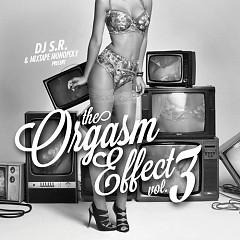 The Orgasm Effect 3 (CD2)