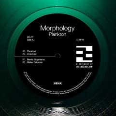 Plankton - Morphology