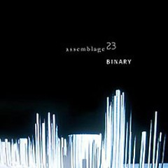 Binary-CDS - Assemblage 23