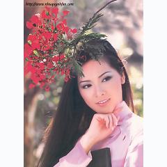 Album Tuyển tập những bài hát hay nhất của Như Quỳnh -