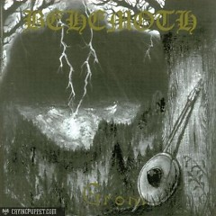 Grom - Behemoth