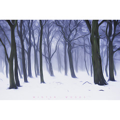 Winter Woods (Single)