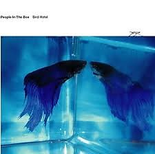 Bird Hotel - People In The Box