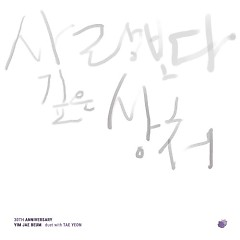 Yim Jae Bum 30th Anniversary Album Project 1 - Yim Jae Bum,TAEYEON