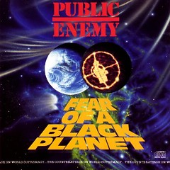 Fear Of A Black Planet (CD2)