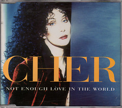 Not Enough Love in the World (CD Single)