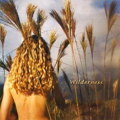 Wilderness - Sophie B. Hawkins