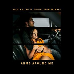 Arms Around Me (Single) - Hook N Sling