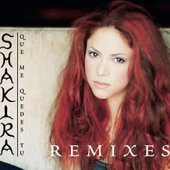 Que Me Quedes Tu Remixes (Single)