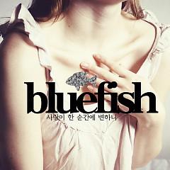 Sarangi Han Sungane Byeonhani (사랑이 한 순간에 변하니) - Blue Fish