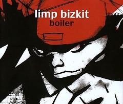 Boiler (Single)