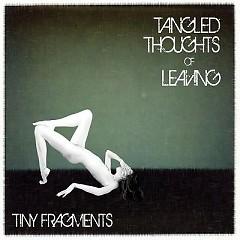 Tiny Fragments (EP)