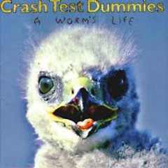 A Worm's Life    - Crash Test Dummies