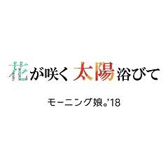 Hana ga Saku Taiyou Abite - Morning Musume