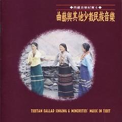 西藏音乐纪实6曲艺与其他少数民族音乐/ Âm Nhạc Của Dân Tộc Thiểu Số (CD2)