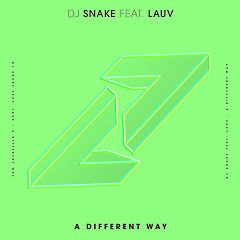 A Different Way (Single) - DJ Snake