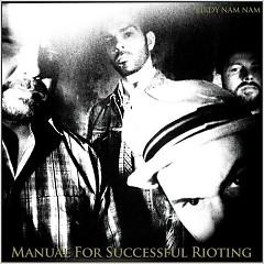Manual For Successful Rioting - Birdy Nam Nam