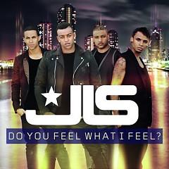 Do You Feel What I Feel (Single)