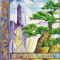 Curious Corn