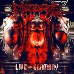 Live Germany - Disgorge