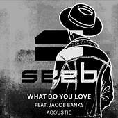 What Do You Love (Acoustic) (Single) - SeeB, Jacob Banks