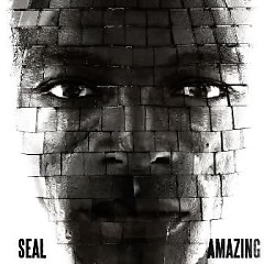 Amazing (CDM) - Seal