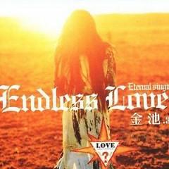 Endless Love - Kim Trì