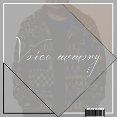 She (Single) - Voice Memory