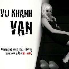 Chiều Tắt Nắng Rồi ... - Never Say Love U (Single)