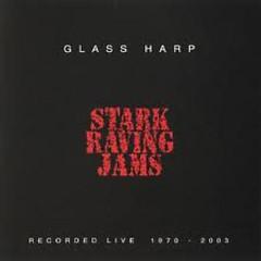 Stark Raving Jams (CD1)
