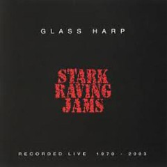 Stark Raving Jams (CD3) - Glass Harp