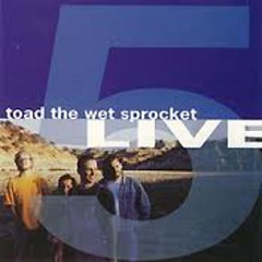 Five Live (EP) - Toad the Wet Sprocket