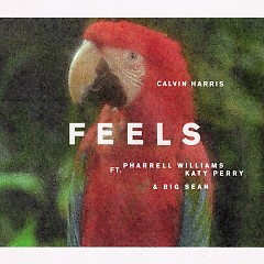 Feels (Single) - Calvin Harris