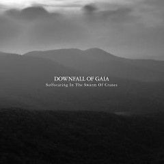 Suffocating In The Swarm Of Cranes - Downfall Of Gaia