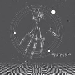 Identity Component Remixes - Morphology